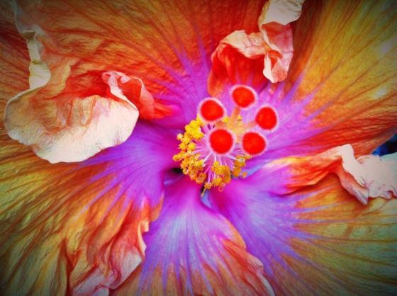 20120901-010430.jpg